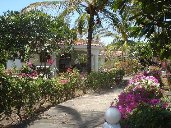 Villas Watamu Resort: fiori