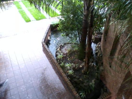 Jardines de Dayman: vista desde el 1 piso hotel las caldas