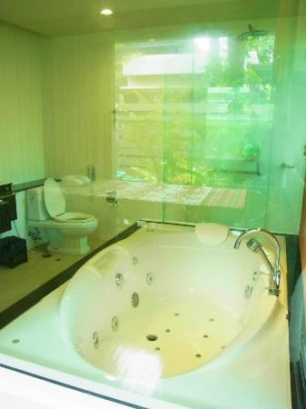Pilanta Spa Resort: Full view of the bathroom, not advisable to bring kids