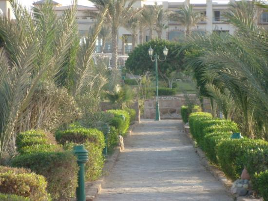 Sentieri tra bellissimi giardini curati obr zek za zen - Giardini curati ...