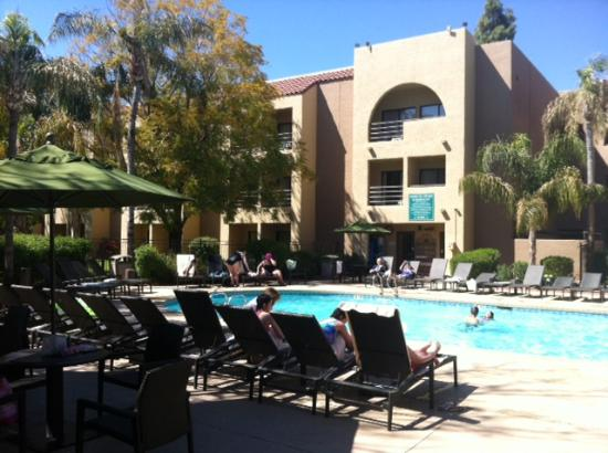 Embassy Suites by Hilton Hotel Phoenix - Tempe: Great pool area.