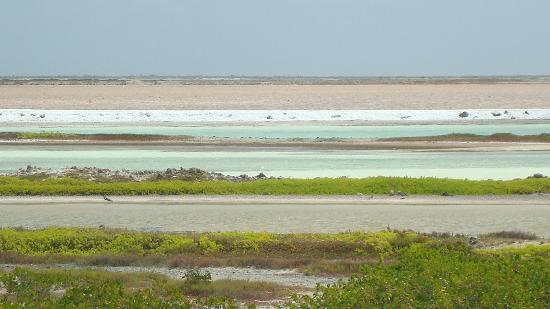 Perla Boneriano: Zoutwinning op Bonaire