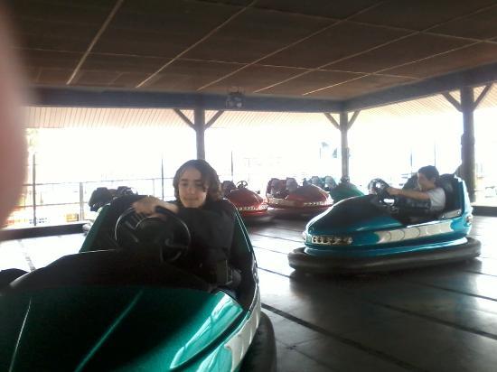 The Track: Enjoying the bumper cars