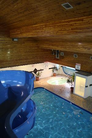 Travelodge Golden Sportsman Lodge: Salt Water Pool