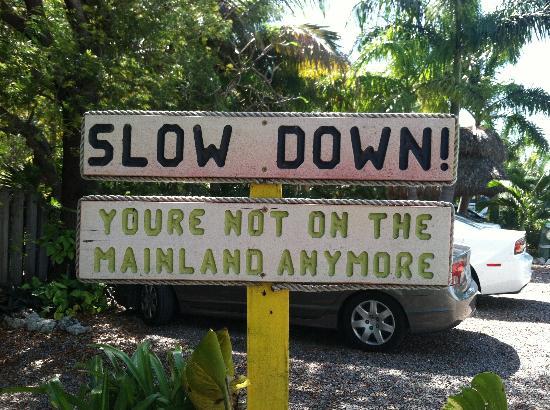 Island Bay Resort : So True!