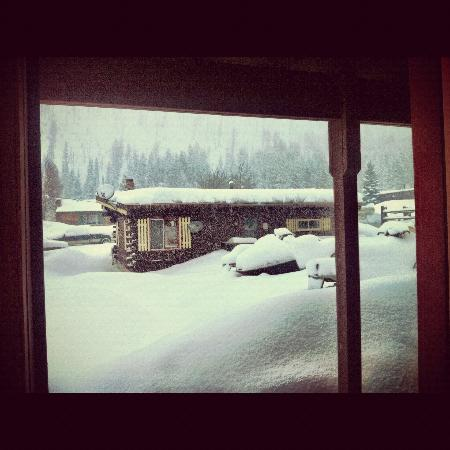 Cooke City High Country Motel: The view out of my room