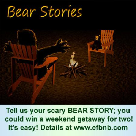 Evergreen Forest B&B: Bear Stories