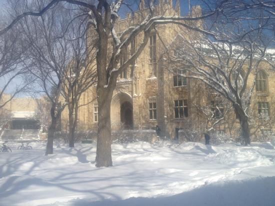 University of Saskatchewan: Thorvaldsen