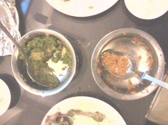 Blue Moon Guest House: Hydrabadi biryani in green and delhi biryani in red