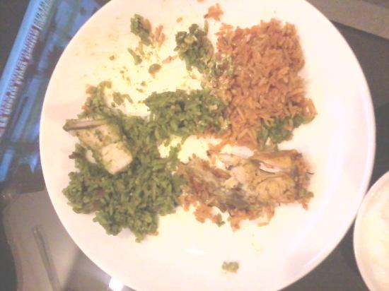 Blue Moon Guest House: green and red biryani