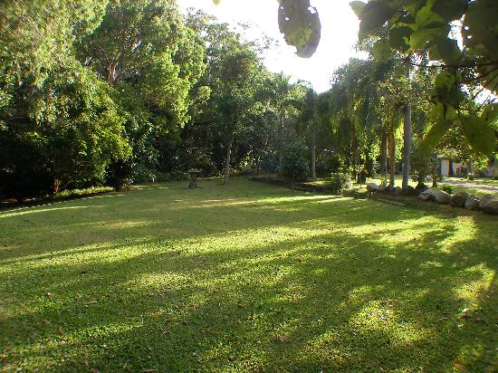 Birdsong B&B Port Douglas: Gardens and Lawns