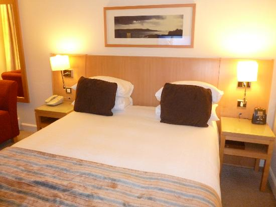 Hilton Dublin Airport Hotel: Double Bed