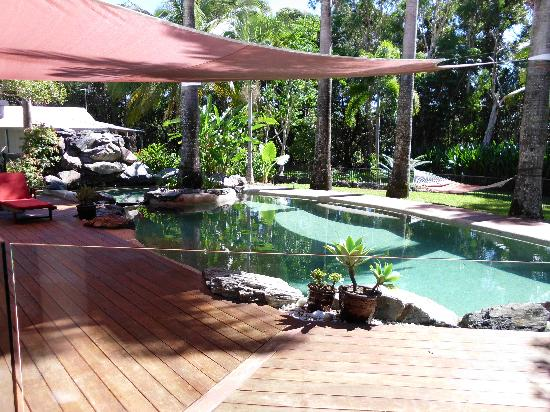 Birdsong B&B Port Douglas: Pool 1