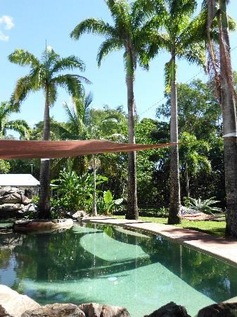 Birdsong B&B Port Douglas: Pool 2