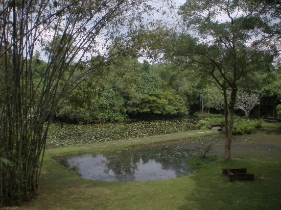 Bentota, Sri Lanka: Gardens of Geoffrey Bawa