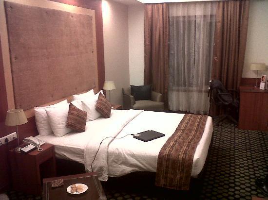 ควอลิตี้อินน์บลิส: Room photo