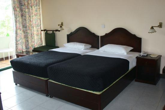 Hotel Tree of Life: La chambre