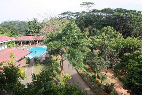 Hotel Tree of Life: La vue depuis la chambre sur le restaurant et la terrasse
