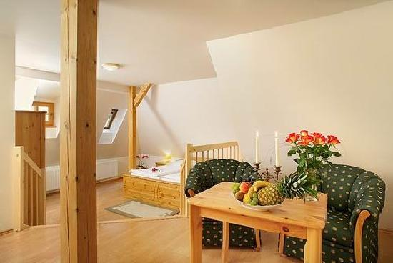 Hotel Zlaty Andel: Double room standard nr 21