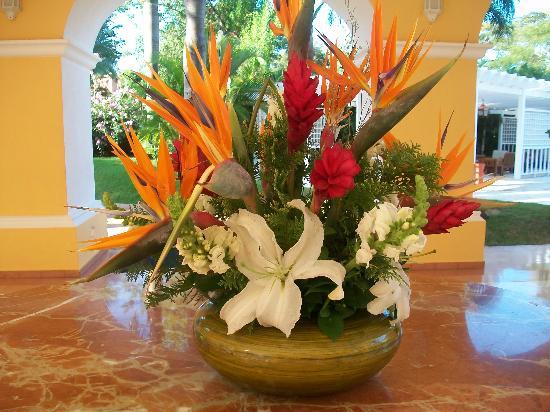 Fotos De Arreglos De Flores Naturales