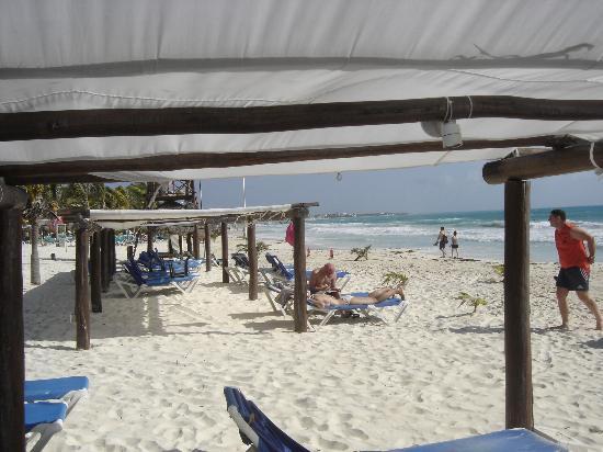 Catalonia Playa Maroma : PLAGE
