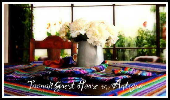 Taanah Guest House Antigua: It's a home away home