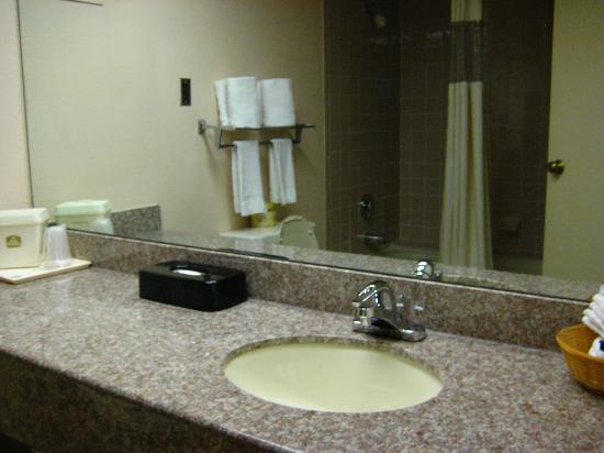 Clarion Inn Austin North: Large bathroom