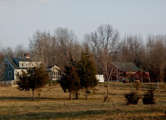 Brookfield Farm Bed & Breakfast: Brookfield Farm