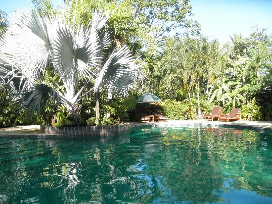The Harmony Hotel: The pool area (and this was during the dry season).