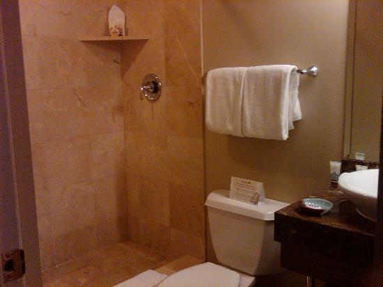 Magnolia Hotel Omaha: Bath 1