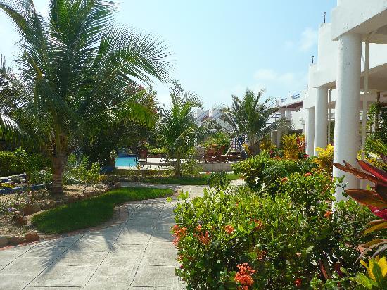 Sarkiki Villas: The gardens around the pool deck.