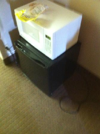 Guest Inn of Longview: really small fridge