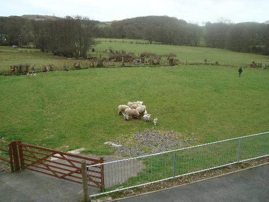 Acorn Court Country House: View from Bufton Suite