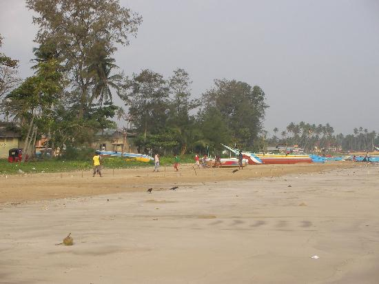 Weligama Bay View: beach cricket