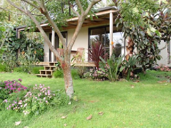 Wharepuke Subtropical Accommodation: Kerikeri Accommodation