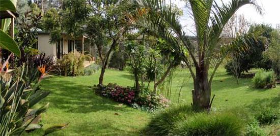 Wharepuke Subtropical Accommodation: Cottages nestled in subtropical gardes