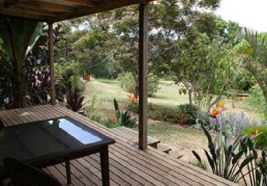 Wharepuke Subtropical Accommodation: Subtropical Garden view
