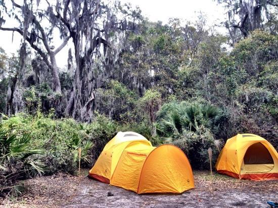Jekyll Island Campground: campsite j-11