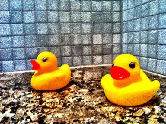 Beach Suites : Little duckies