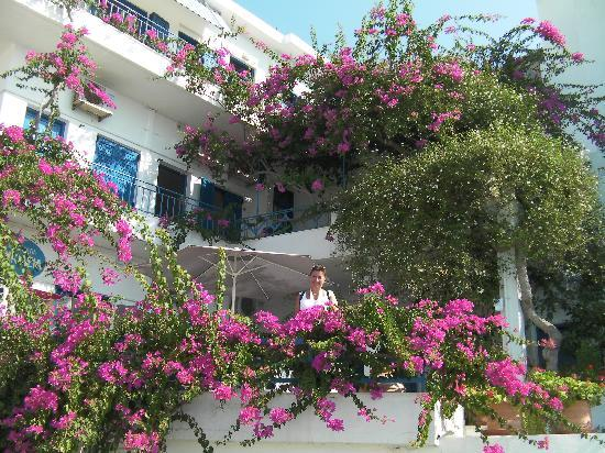Hotel Hariklia: Hotellet set fra gaden med alle blomsterne