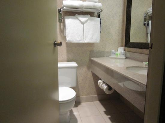 Best Western Plus Abercorn Inn: Bathroom entrance, door hits toilet bowl