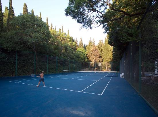 Villa Goluboy Zaliv: Tennis court