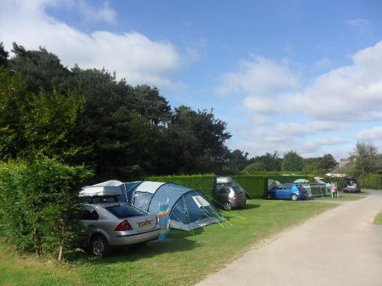 East Crinnis Holiday Park: Private pitches with bay hedges and electric hook up's