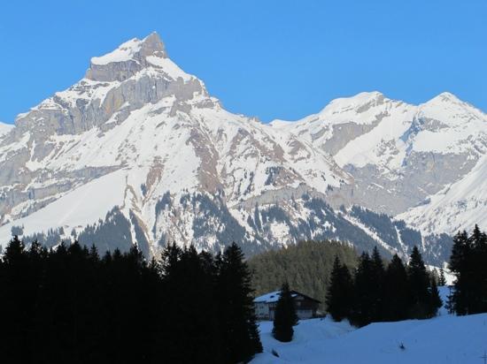 Restaurant Caprice: 瑞士铁力士峰