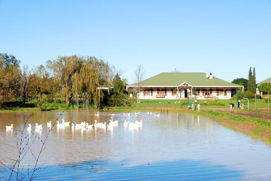 Hoopenburg Guest House: Tranquility