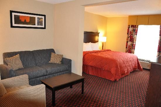 Quality Inn & Suites: King Suite Room
