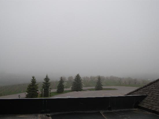 Chateau Chantal Winery and Inn: Foggy morning room view