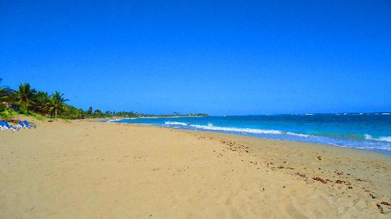 写真Kite Beach Hotel枚