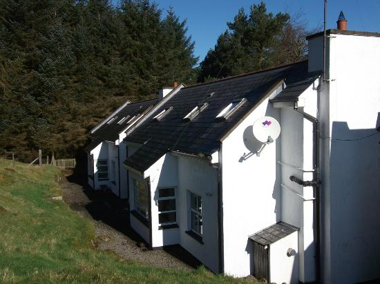 Dublin Cottages: rear of Fern cottage and neighboring cottage
