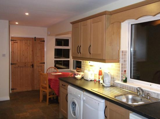 Dublin Cottages: Kitchen opposite view - nice door